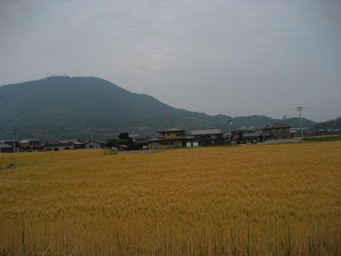 香川 115.jpg