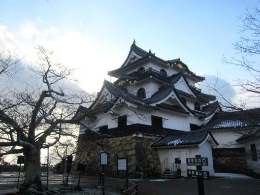 彦根城 (5).JPG