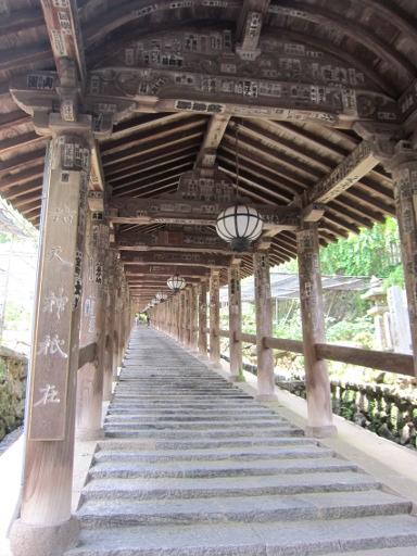 長谷寺 (2).JPG